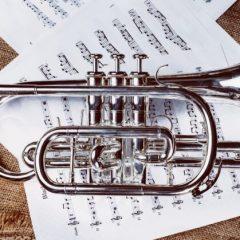 Formation professionnelle en musique : quels débouchés ?